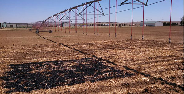 Agricultural field sites where CSU researches are studying biochar's impacts on crop yields, water retention and GHG emissions