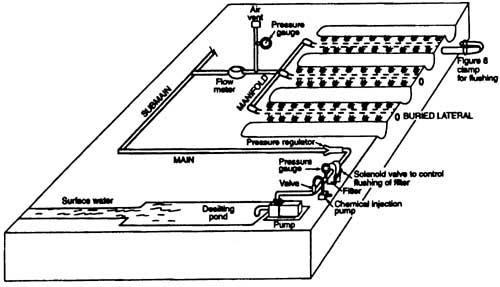 Subsurface Drip Irrigation Sdi 4 716 Extension