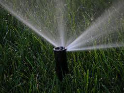 Home Sprinkler System