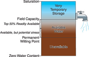 Graphic representation of soil water concepts