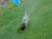 Figure 8: This sprinkler head is not parallel to slope.