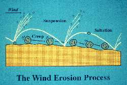 The wind erosion process