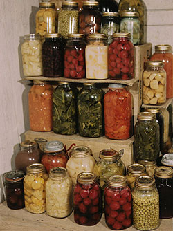 Food Preservation Without Sugar or Salt - 9 302