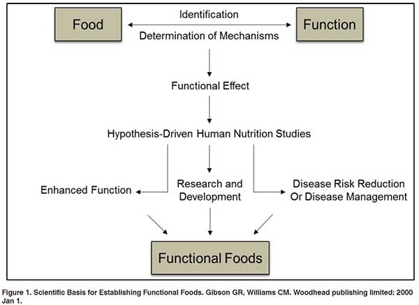 Scientific basis for establishing function foods.
