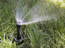 Pop-up spray sprinkler head