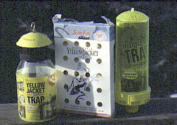 Yellowjacket traps