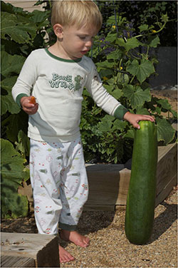 boy with zuccini