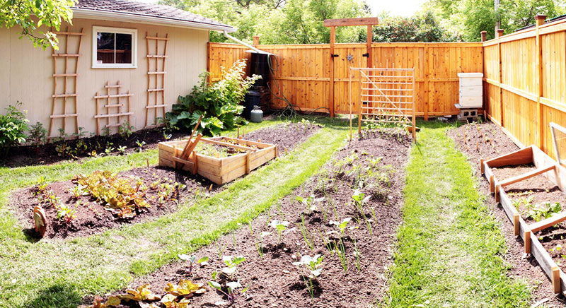 Yard garden extensionextension Yard and garden