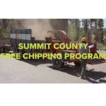 Free Chipping Program