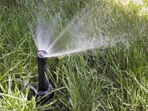 pop up sprinkler head