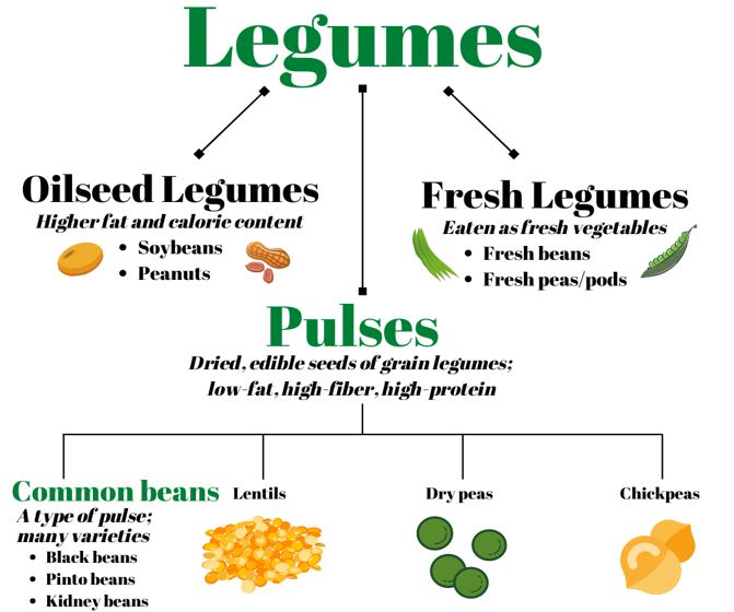 Differentiating the terms legumes and pulses